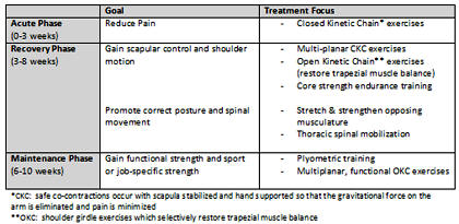 Snapping Scapula Syndrome - Physical Therapy - CyberPT